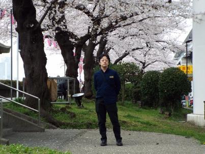 sumida_sakura (7).jpg