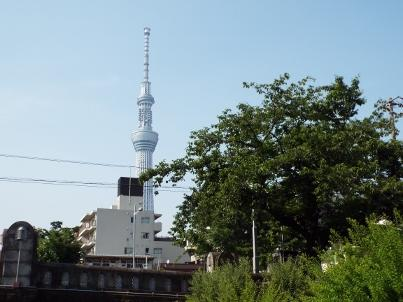 shinsuikouen (11).jpg