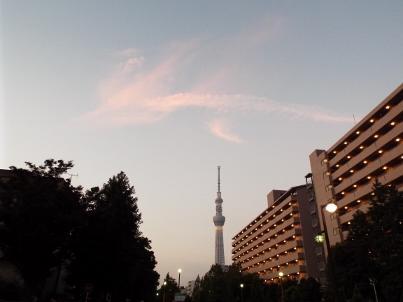 sumidamatsuri2016 (19).jpg