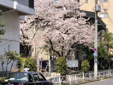 200403 (1).jpg